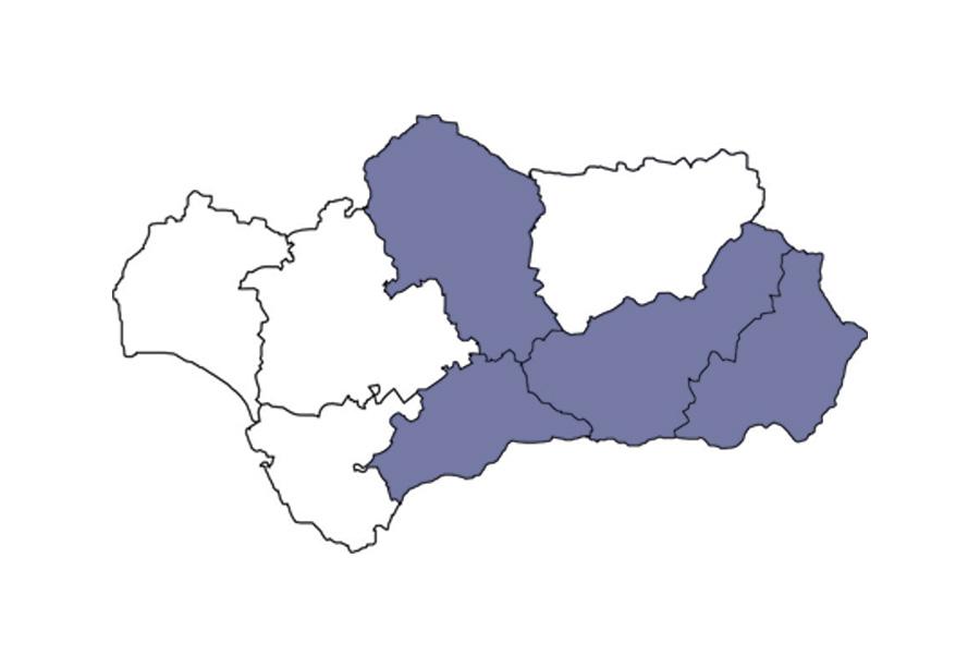 2004: Expansión a Córdoba, Almería y Málaga
